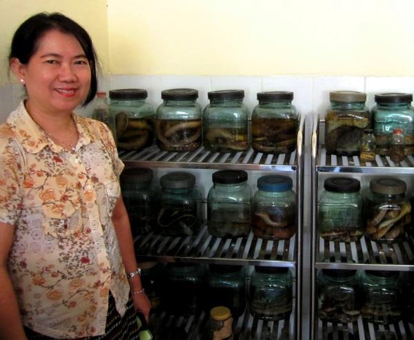 Professor Khin Thida Thwin with specimens at San Pya Hospital.