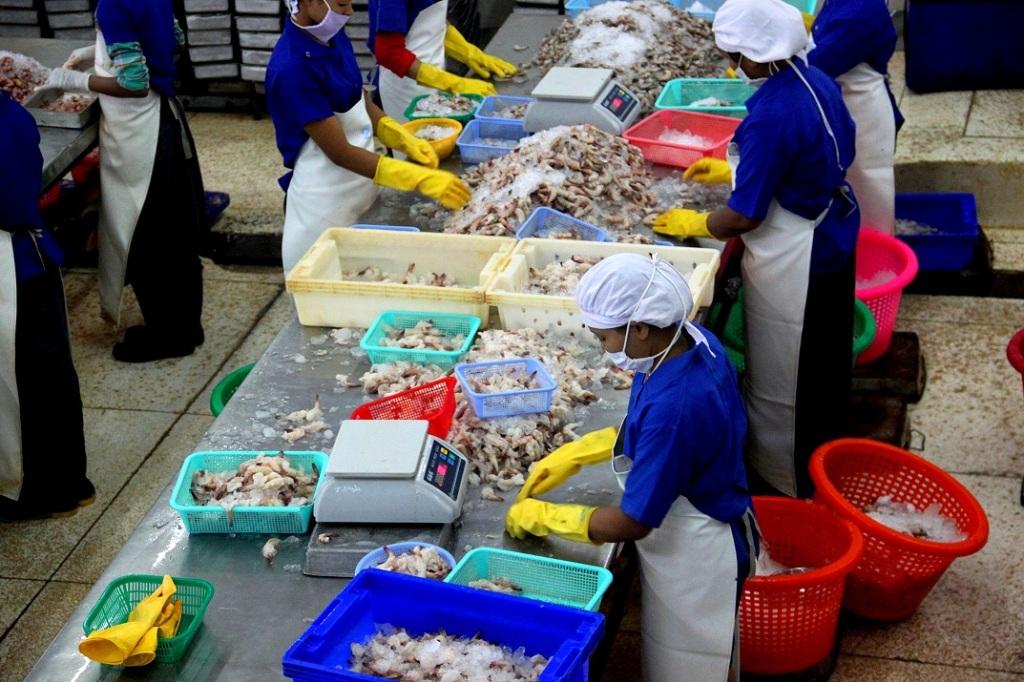 Ocean Harvest's factory in Yangon