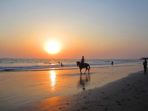 Ngwe Saung's ponies appear at sunset